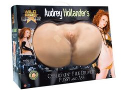 Audrey Hollander Pile Driver Pussy and Ass